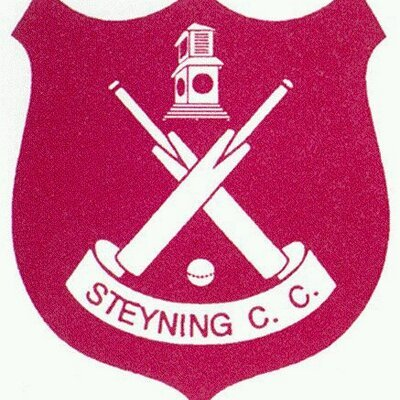 steyning cricket club logo
