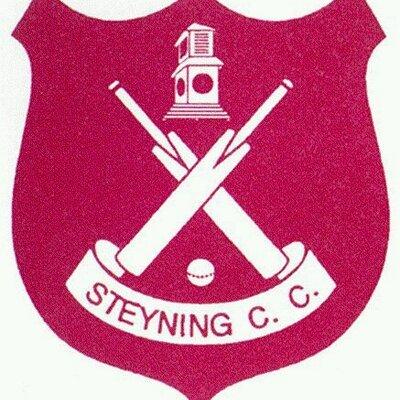steyning cricket club logo